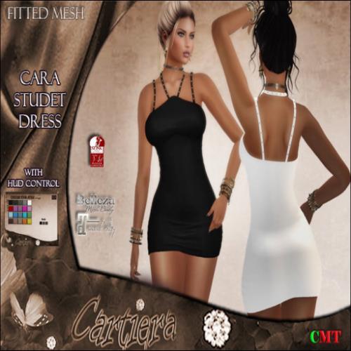 Cara Studed Dress