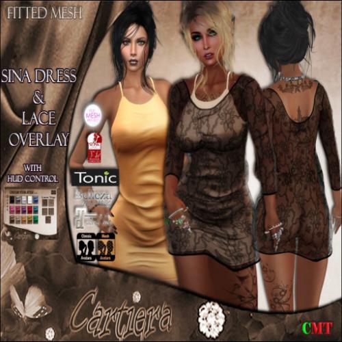Sina Dress & Lace Overlay